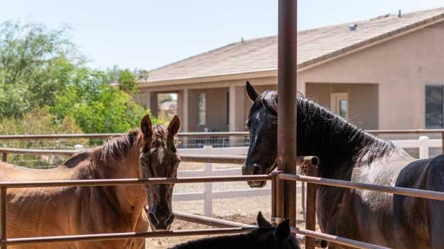 Photo of 26509 S HAWES Road, Queen Creek, AZ 85142