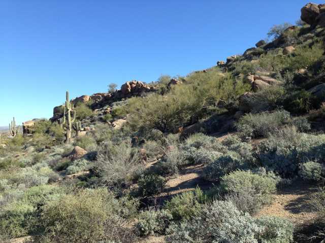 Photo of 27915 N 103RD Place, Scottsdale, AZ 85262