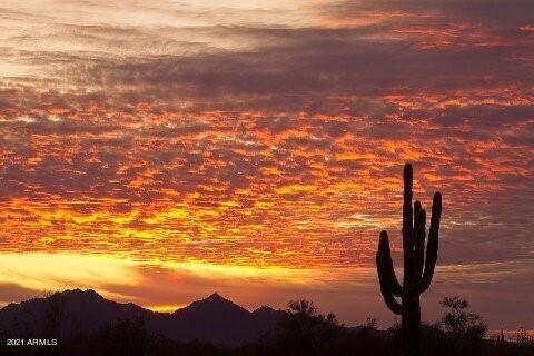 Photo of 29064 N 111TH Street, Scottsdale, AZ 85262
