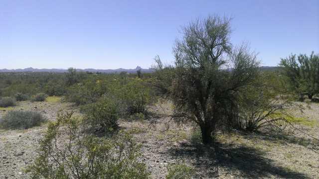 Photo of 34765 S Nine Irons Road, Wickenburg, AZ 85390