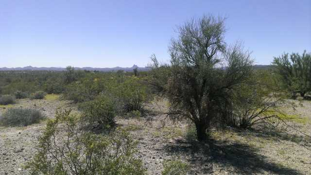 Photo of 34765 S Nine Irons Road, Wickenburg, AZ 85390